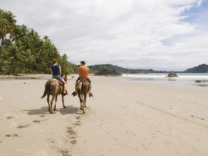 Horseback on the beach